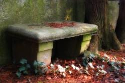 © seeyou | c. steps - Fotolia.com