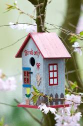 einrichtungsforum_vogelhaus_© joegast - Fotolia.com