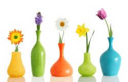 Für Jede Blume Die Richtige Vase