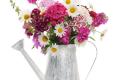 Blumen stilvoll in Szene gesetzt – gewusst wie
