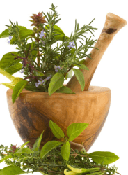 gewuerze-anpflanzen