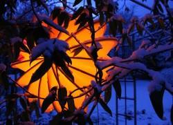 Oranger Lampion im dunklen, verschneiten Garten